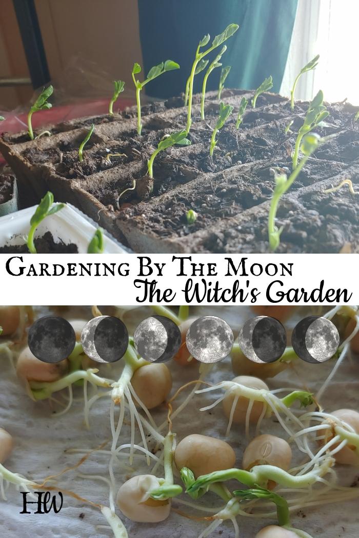 Gardening Moon Magic – The Witch'sGarden
